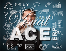 Visual ACE Enterprise Business Management Software