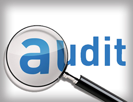 Auditing & Assurance